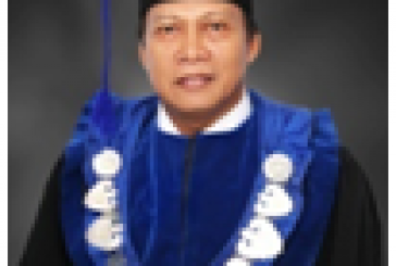 Magister IPS